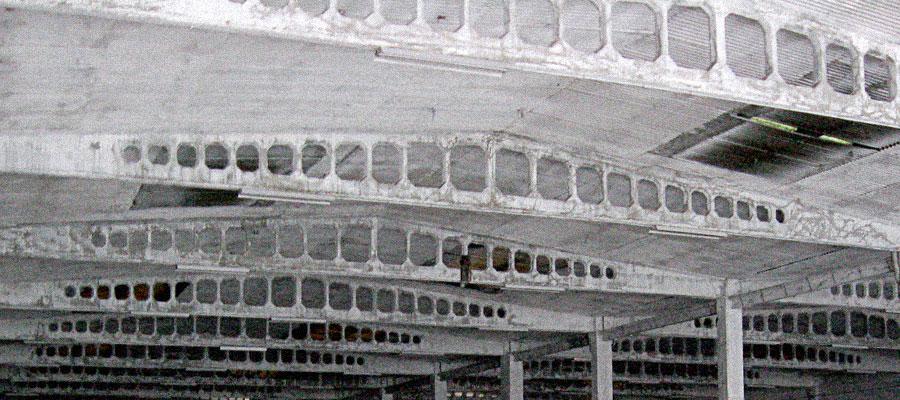 Adecuación de Nave para Implantación de Supermercado LCC - Palencia - Coined